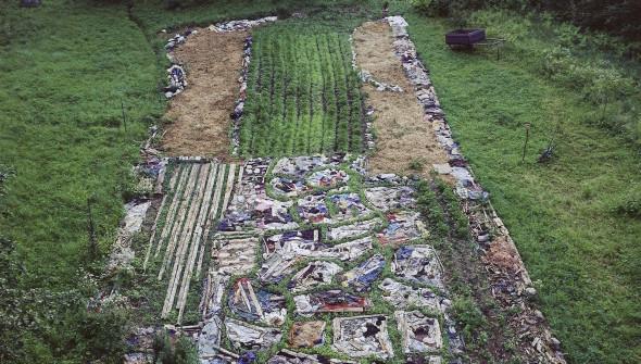 Land-art-Earthworm-featured2