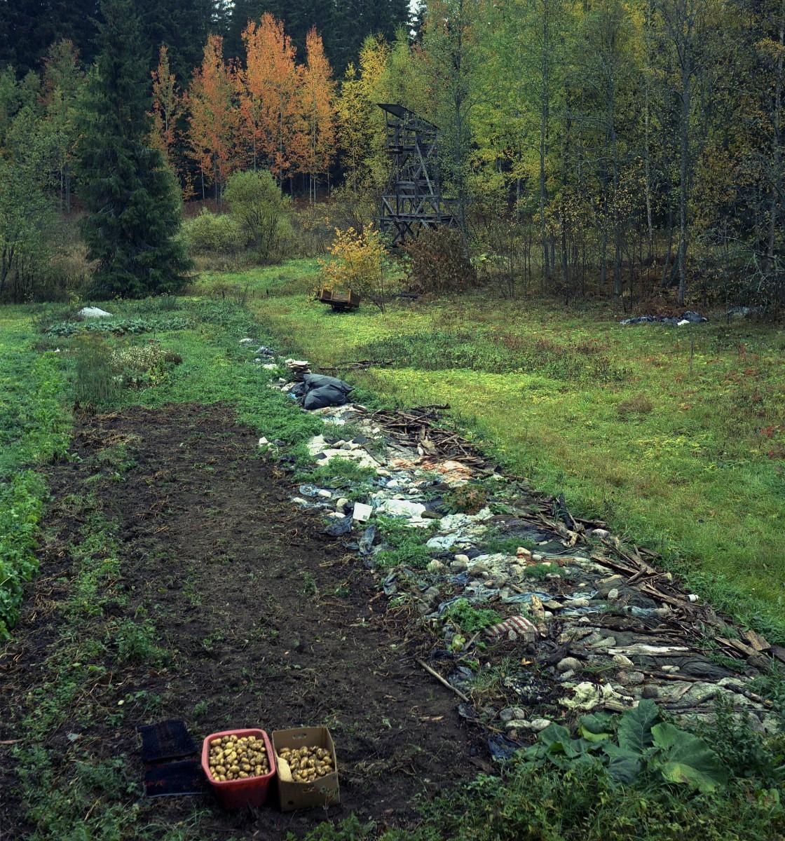 Land art-Earthworm field10
